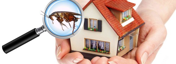 Residential-Pest-Control-Service.1